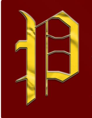 pantherregiment6 copy.png